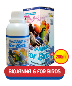 biojanna-6-for-bird-tetes