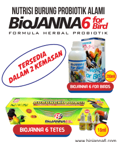nutrisi burung alami - biojanna 6 for bird