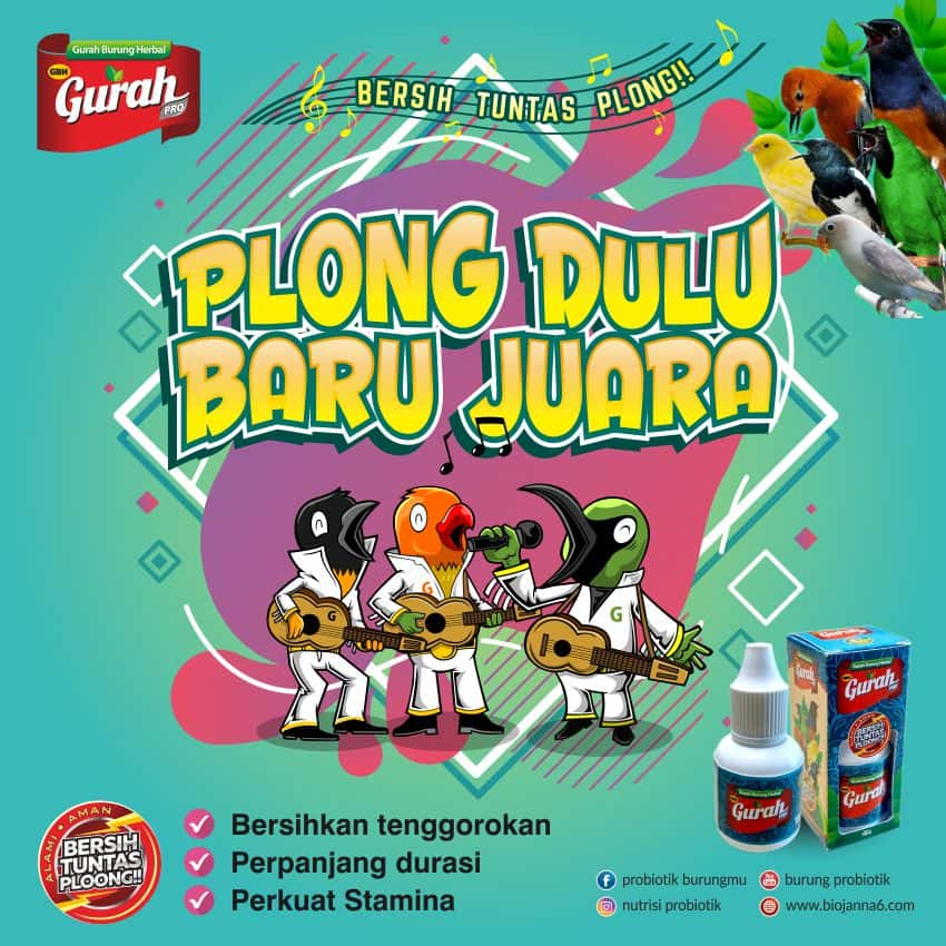 gurah herbal burung